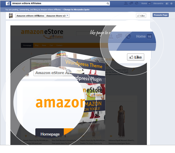 Amazon eStore Affiliates Plugin - 12