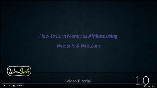 WooCommerce Amazon Affiliates - WordPress Plugin - 21